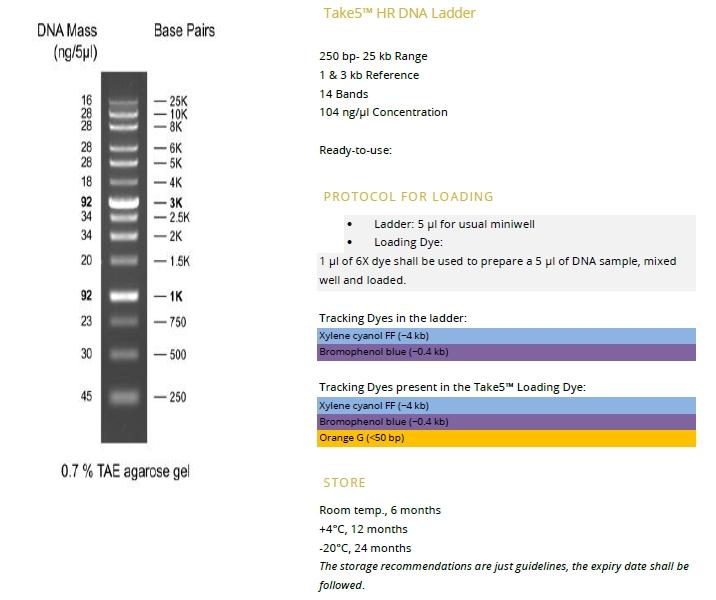 Take5™ HR DNA Ladder