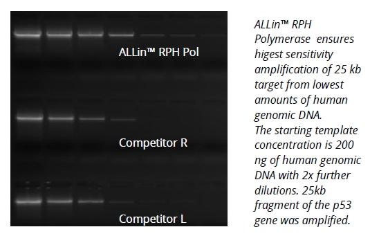 ALLin™ RPH Polymerase